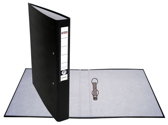 caesar office detail of product level arch file with 2 ring binder